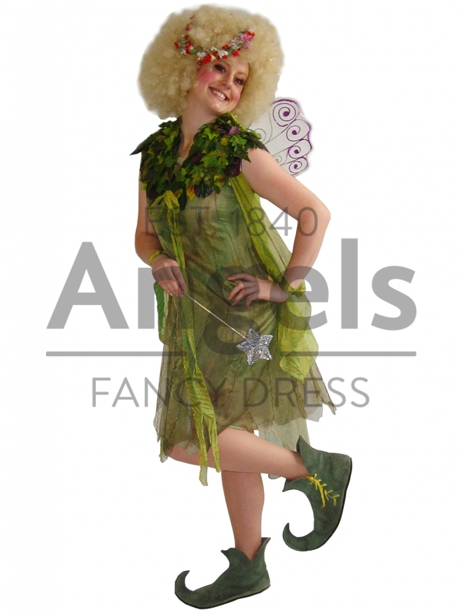 Angels Fancy Dress - Our gallery of character hire costumes